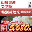 山形県産 つや姫 10kg(2kg×5袋)【特別栽培米】【28年度産】【白米】【送料無料】〈特Aランク〉