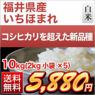 30年産 福井県産 いちほまれ〈特A評価〉 10kg (2kg×5袋)【白米】【送料無料】