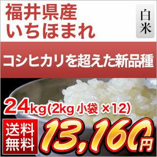 30年産 福井県産 いちほまれ〈特A評価〉 24kg (2kg×12袋)【白米】【送料無料】