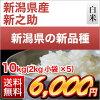 新潟縣生產的新品種新之助白米10kg(*5袋2kg)