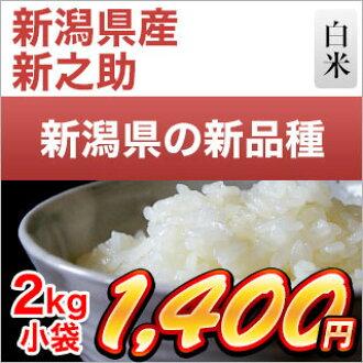 新潟縣生產的新品種新之助白米2kg