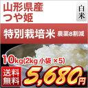 30 yama tsuya 10