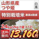 30 yama tsuya 24