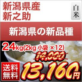 令和元年産(2019年) 新潟県の新ブランド 新之助 白米 24kg(2kg×12袋)【送料無料】
