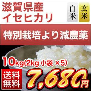 令和元年産(2019年) 滋賀県産 イセヒカリ10kg(2kg×5袋)【減農薬】【送料無料】【白米・玄米 選択】