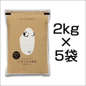 新米 令和3年(2021年) 新潟県産 コシヒカリ 10kg (2kg×5袋)(白米)新潟こしひかり 新潟お米【送料無料】【米袋は真空包装】【即日出荷】