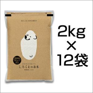 新米 令和3年(2021年) 新潟県産 コシヒカリ 24kg (2kg×12袋)(白米)【送料無料】【米袋は真空包装】【即日出荷】