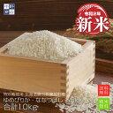 新米 【令和2年産】 送料無料 特別栽培米 減農薬栽培米 玄米 米 /北海道産 ゆめぴりか5kg ななつぼし 5kg 合計10kg蘭…