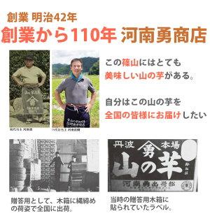 丹波篠山産山の芋生とろろ1箱YS60(60g×12袋)【山芋】【河南勇商店】【お中元のし対応可】