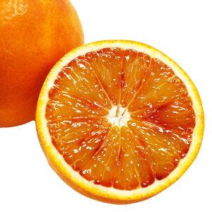 国産 ブラッドオレンジ 送料無料 3kg 2月下旬より出荷予定 愛媛 甘いみかん ミカン 蜜柑 産地直送 農家直送 特別栽培 低農薬栽培 タロッコオレンジ フルーツ 果物 大嶌屋(おおしまや)