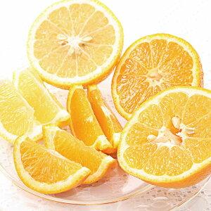 みかん 3種 おでこちゃん 入り 詰め合わせ 4kg以上 フルーツ 果物 柑橘 送料無料 <1月下旬より出荷>熊本産 農家直送 産地直送 ギフト 内祝い プレゼント 大嶌屋(おおしまや)【gift】