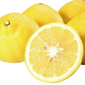 春みかん 柑橘 はるか 3kg 送料無料 農家直送 産地直送 サラダみかん フルーツ 果物 大嶌屋(おおしまや)【gift】