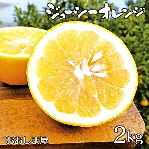 フルーツ 果物 河内晩柑 ジューシーオレンジ 2kg 送料別 朝食 ジュース に 果汁 100% 国産 美容 健康 ダイエット 朝活 大嶌屋(おおしまや)<予約:4月上旬より出荷予定>【gift】