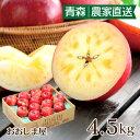 \楽天スーパーSALE/ お歳暮 りんご フルーツ グルメ 青森 林檎 蜜入り葉とらずふじりんご 送料無料 4.5kg 青森 大小混合(12玉-22玉…