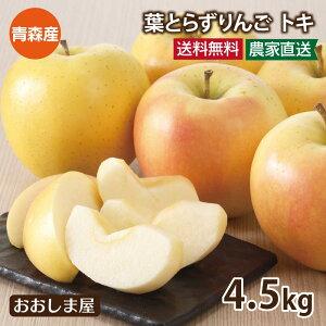 \ポイント2倍/<予約:10月上旬より出荷予定> フルーツ 果物 青森 トキ りんご 4.5kg 大小混合 送料無料 国産 とき リンゴ 林檎 黄色 青りんご 大嶌屋(おおしまや)