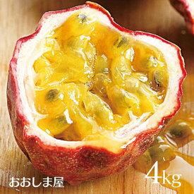 【予約受付中6月下旬より】 フルーツ 果物 パッションフルーツ 4kg(52玉〜60玉) 国産 熊本 農家直送 完熟 もぎたて 大嶌屋(おおしまや)