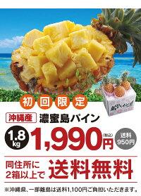 【予約4月下旬出荷】初回限定パイナップル1.8kg沖縄石垣西表国産パイン(ご自宅用お試しサイズご注文者様のみにお届け)<島パイン2箱以上ご購入で送料無料>フルーツ果物大嶌屋(おおしまや)