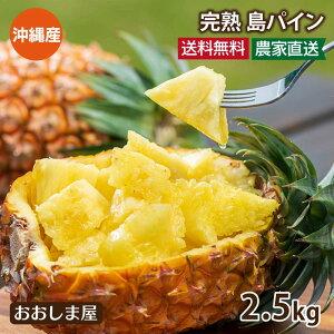 \5倍/沖縄 パイナップル 島パイン 2.5kg 約2玉〜9玉入り 送料無料 パイン 南国フルーツ 産地直送 農家直送 国産 フルーツ 果物 大嶌屋(おおしまや)