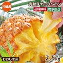 【予約5月中旬出荷】国産 パイナップル 送料無料 スナックパイン 2.5kg (約2玉-9玉入り) パイン ボゴールパイン 島…