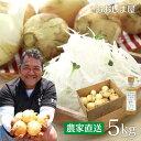 農家直送 塩たまちゃん 5kg 送料無料 ドレッシング付き 新玉ねぎ 塩たまねぎ 子出藤 農園 (ねでふじ)塩タマネギ 塩…