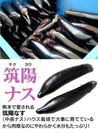 ナス3kg有機栽培品種:筑陽ナスなすなすび茄子送料無料野菜旬料理レシピバーベキュー漬物国産熊本大嶌屋(おおしまや)