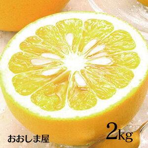 フルーツ 果物 河内晩柑 ジューシーオレンジ 2kg 送料別 朝食 ジュース に 果汁 100% 国産 美容 健康 ダイエット 朝活 大嶌屋(おおしまや)<予約:3月下旬より出荷予定>