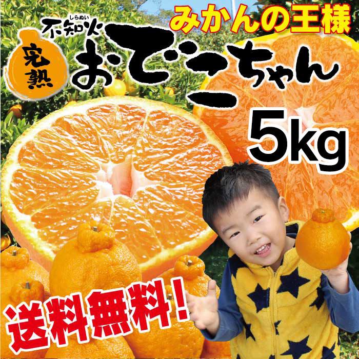 不知火完熟おでこちゃん 5kg 送料無料 フルーツ 果物 大嶌屋(おおしまや)