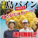 濃蜜 島パイン 沖縄県産 3.5kg<5月上旬より出荷>