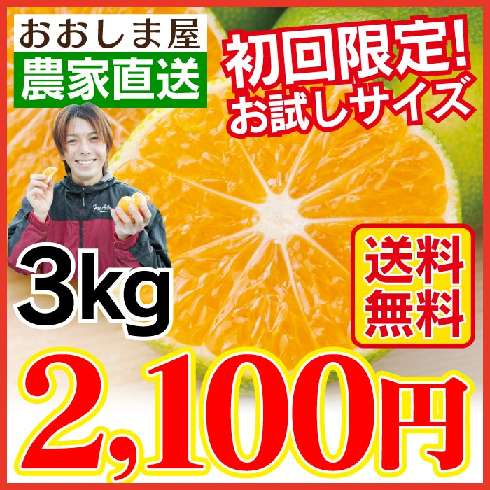 みかん 3kg 送料無料 2S〜3L( 35玉前後 ) 初回限定【2018年度★早期予約受付中 9月中旬出荷予定】