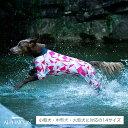 【ALPHAICON】2020年モデル フルドッグガード 1XLサイズ アルファアイコン FULL DOG GUARD 1XL