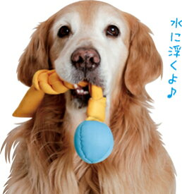 エナジーフィッチ アクティブコメット【犬のおもちゃ】<あす楽対応>