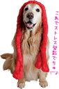 エナジーロープ【犬用おもちゃ】<あす楽対応>