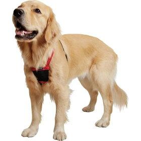成長期も使える引っ張り制御胴輪[Mサイズ]【大型犬向け】<あす楽対応>