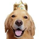 バースデー王冠【犬のかぶりもの】<あす楽対応>