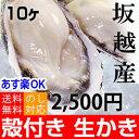 ★あす楽対応!お歳暮ギフトにも★坂越産 殻付き 牡蠣 10ヶ [送料無料]生食OK★今は少し小ぶりです。臭みがなく食べや…
