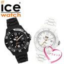 Pair icewatch 0004