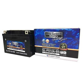 PSB173 GL-PS12A-BS(YT12A-BS 互換)(ジェルタイプ 液入充電済):Pro Select Battery(プロセレクトバッテリー)