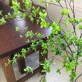 【NEW】アーティフィシャルフラワードウダンツツジ単品花材H145造花アーティフィシャルフラワーPRIMA|