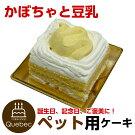 新入荷(コミフ)誕生日ケーキワンちゃん用犬用ワンちゃん用コミフかぼちゃと豆乳のショートケーキペットケーキ