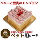 新入荷(コミフ)誕生日ケーキワンちゃん用犬用ワンちゃん用コミフベリーと豆乳のモンブランペットケーキ