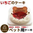 新入荷(コミフ)誕生日ケーキバースデーケーキワンちゃん用犬用ワンちゃん用コミフいちごのバースデーケーキペットケーキ(送料別/複数購入でお得)