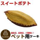 新入荷(コミフ)誕生日ケーキワンちゃん用犬用コミフスイートポテトペットケーキ