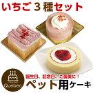 新入荷(コミフ)誕生日ケーキワンちゃん用犬用ワンちゃん用コミフいちごケーキ3種類セットペットケーキ