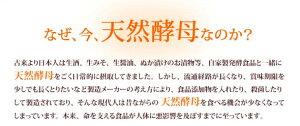 【ポイント10倍】天然酵母第一酵母コーボンマーベル525ml×1本送料無料(※一部地域除く)