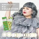 エヌズコレクション N's COLLECTION 1DAY (1箱10枚入り)( 送料無料 カラコン ワンデー 1日使い捨て ワンデーカラコン…