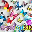 メール便送料無料 3D蝶のウォールステッカー 【12枚入】 (リアルな立体感!) ペーパーマグネット 水に強い! マグネ…