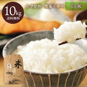 九州熊本産 無農薬栽培サン・ファーム米 白米10kg 送料無料