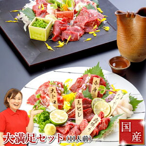 10%OFF 馬刺し お歳暮 ギフト 早期特典付 国産 肉 馬刺し ギフト 熊本 送料無料 大満足セット 約11人前 550g 赤身 霜降り 中トロ 大トロ たてがみ 馬ヒレ 馬刺 馬肉 肉 贈り物 贈答 内祝い プレゼ