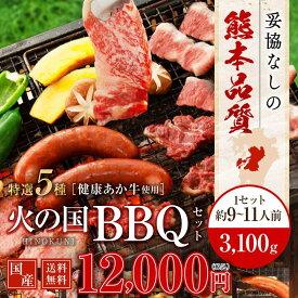 馬刺し 焼肉 バーベキュー BBQ キャンプ 火の国セット(9〜11人前) 3,100g 牛肉 豚肉 鶏肉 九州 熊本 焼き肉 バーベキュー 利他フーズ 母の日 ギフト 母の日
