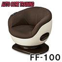 (12/15出荷)◆新品◆体感トレーナー FF-100【フジ医療器】